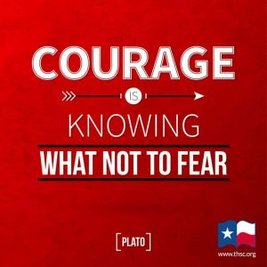 Courage to Support Conservative Values Candidates