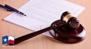 Sen. Kolkhorst Files SB 738 and SB 739 to Protect Parental Rights