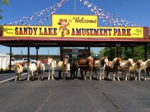 Sandy Lake Amusement Park 9th. Annual Home School Family Fun Day
