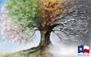 For Everything There is a Season (Ecclesiastes 3:1)