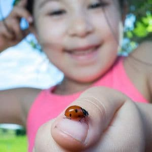 Dallas Arboretum Homeschool Day: It's a Bug's Life
