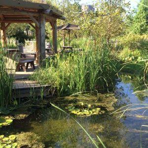 Dallas Arboretum Homeschool Day: Wetlands Biologist