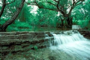 Lockhart State Park Homeschool Class: Your Watershed